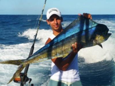 Tropisch zeevissen